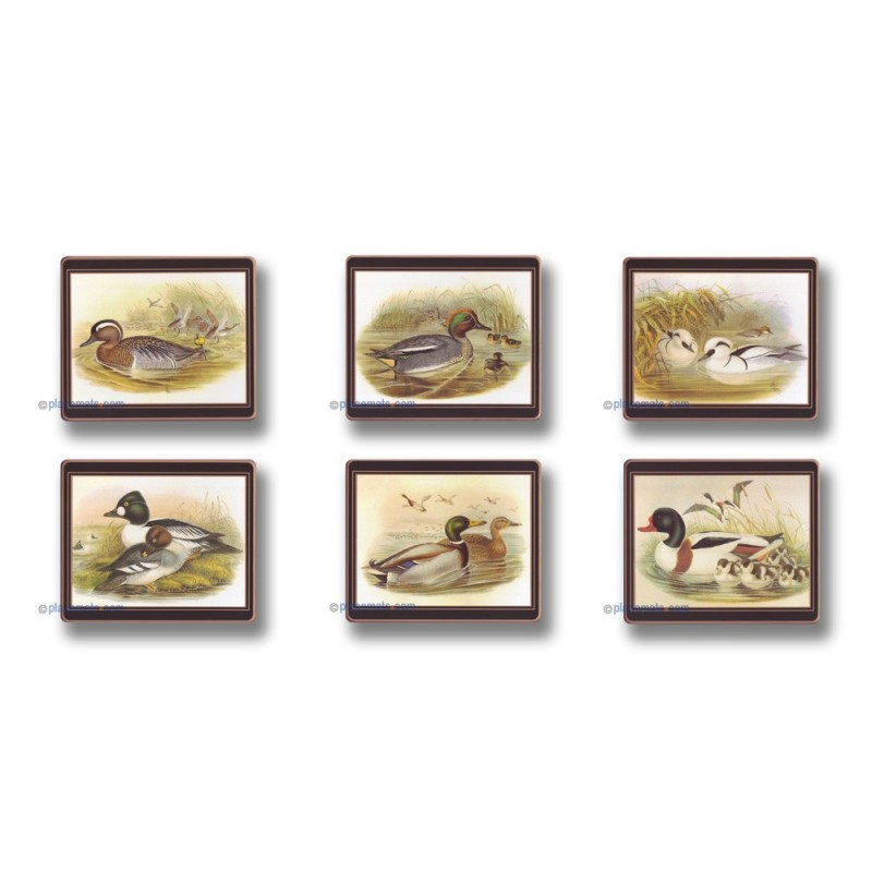 Lady Clare Gould Ducks Coasters
