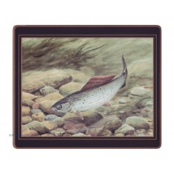 Lady Clare Game Fish Coasters