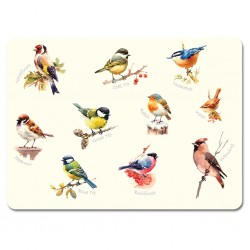 Garden Birds melamine tablemats