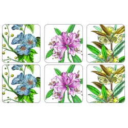 Pimpernel Stafford Blooms drinks coasters