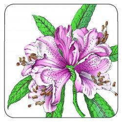 Pimpernel Stafford Blooms drinks coaster purple