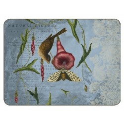 Jason Catesby Collage Placemats